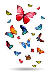 Butterflies in Stomach Clip Art